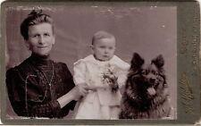 CDV Foto Feine Dame mit Baby und Hund - Grottau 1900er