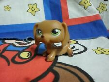 Littlest Pet Shop #307 Dachshund Puppy Dog with Green Eyes Authentic