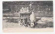 Flanders,Belgium,Old Lady Selling Milk with Dog Cart,c.1898-1906