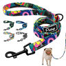 4ft Dog Leash with Padded Handle Fashion Pet Walking Leads for Small Large Dogs