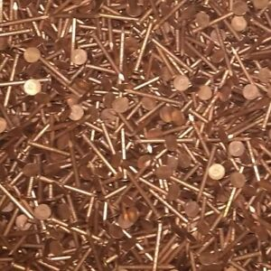 50 X Copper Clout Nails - Tree Stump Removal / Roofing 30, 32 or 38mm