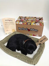 Perfect Petzzz - Huggable Breathing Dog - Black Lab