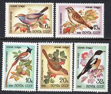 5103 - Russia 1981 - Songbirds - Birds - Fauna - Mnh Set