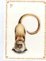 French Postcard Cat Kitten Goldfish Bowl Alphabet Letter P Name Surname Card