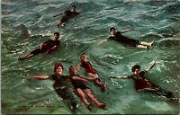 Vintage Postcard c1910s Great Salt Lake Utah UT Floaters Edwardian Swimmers UNP