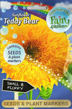 Fairy Garden Dwarf Sunflower 'TEDDY BEAR' Flower Seeds & Plant markers 2022 SALE