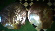 2 TRES GRAND COQUILLAGES ANCIEN EN NACRES DE TAHITI  19,5 CM X 19 CM