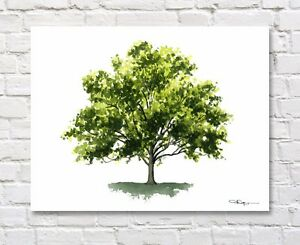 Sycamore Tree Art Print Watercolor Painting by Artist DJR