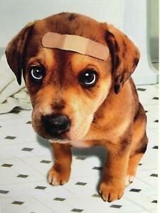 """""""Hope Your Tail's Waggin' Again Soon!"""" GET WELL CARD Avanti PUPPY DOG"""