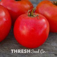 Tomato - Eva Purple Ball - 50 heirloom seeds + Free Gift