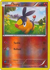 Tepig Common Reverse Holo Pokemon Card BW Base 15/114