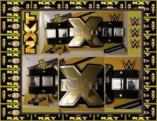 WWE NXT TAKE OVER CHAMPIONSHIP REPLICA WRESTLING BELT Brand New