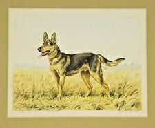 Paul Wood Signed Print Paris Etching Society German Shepherd Dog Berger Allemand