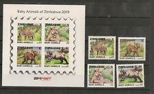 Zimbabwe Stamps Baby Animals., latest edition 2019, set and miniaturesheet