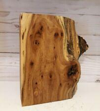 Curly Hardwood Birdseye Elm Burl wood, live edge turning stock, pen stock, epoxy