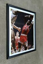Philadelphia 76ers Hal Greer Framed 11x14 Photo NBA