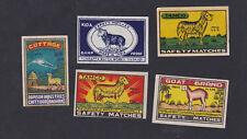 Ancienne  étiquette  allumettes Inde BN56661 Mouton