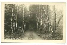 Birch Road, Kearsarge, NH ~ RPPC ~ Vintage B & W Photo