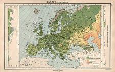 1931 MAPA ~ EUROPA BOSQUE DE VEGETACIÓN POSTRES MOUNTAINS OCÉANO CORRIENTES