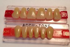 Acrylic False Teeth For Dentures. Accutone,shade81,upper & lower Anterior A26