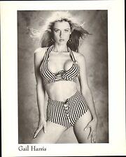 GAIL HARRIS - 1990 - PUBLICITY  PORTRAIT- SENSUAL - ORIGINAL 8X10 NM STILL PHOTO