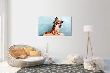 Sticker Mural Autocollant Chihuahua chien V2 taille : 120 x 70 cm