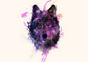 Wolf Painting Poster Purple Wild Animal Photo Poster Print ONLY Wall Art A4