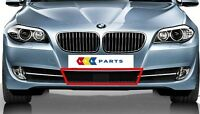 BMW 5 SERIES NEW GENUINE F10 F11 10-14 FRONT BUMPER LOWER ACC GRILL 7285959