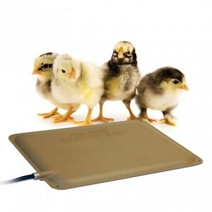 """K&H Outdoor Chick Chicken Heater Heated Pad Thermo-Peep Pad Mat 9"""" x 12"""""""