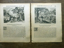 LOT 2 GRAVURES 18e s. Figure de l'Ancien Testament : RUTH Bible Sacy MERIAN 1770