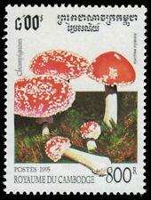 """CAMBODIA 1430 - Mushrooms """"Amantia muscaria"""" (pf61780)"""