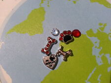 RED IN MEMORY OF DOG PAW BONE LOT FOR LIVING MEMORY LOCKET FLOATING CHARMS #154