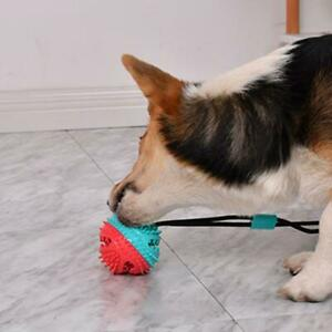 Pet Molar Bite Toys Dog Tug Rope Ball Chew Toys Pet Suction Cleaning Cups I7T9