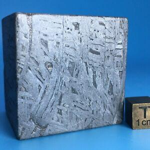 509.1gm Aletai iron meteorite ZZ0350