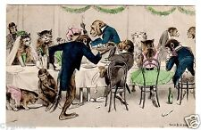 POSTCARD MONKEYS AND CATS AT WEDDING DINNER 1903
