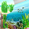 Fish Tank Anacharis Bunch Elodea Densa Aquatic Freshwater Aquarium Plants Decor