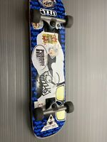 Tony Hawk Skatepark Series Skateboard Complete Deck Blazer Trucks 54mm Wheels