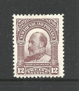 NEWFOUNDLAND SCOTT 96 MLH VF - 1910 12c LILAC BROWN  GUY ISSUE   CAT $75.00