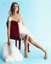 Gwyneth Paltrow 8x10 Photo 012