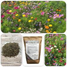 Kiepenkerl Saatgut Blumenwiese 1 kg für 100 m² Bienenweide Honig Garten