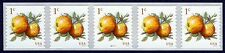 #5037 1c Albemarle Pippin Apples, PNC P111111 Mint **ANY 4=FREE SHIPPING**
