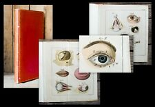 1816 elettrocardiogramma occhi scienza medica Alban assistenza sanitaria