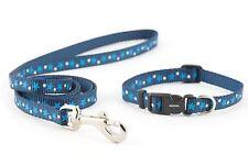 Ancol Small Bite Puppy Set - Nylon - Blue Stars