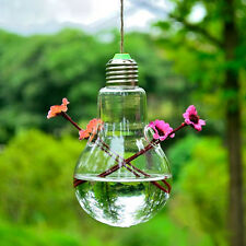 Hanging Glass Flower Planter Vase Terrarium Container For Home Garden Decor exp