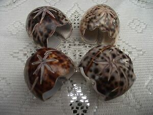 SET OF FOUR CARVED TIGER COWRIE SEA SHELL NAPKIN RINGS