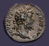Archaios | Denarius SEPTIMIUS SEVERUS FVNDATOR PACIS Olive Branch Scroll | 45.10
