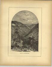 1883 Wood Engraving Allegrippus