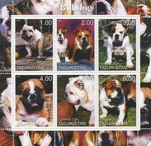 BULLDOG CANINE ANIMAL PET DOG TADJIKISTAN 2000 MNH STAMP SHEETLET