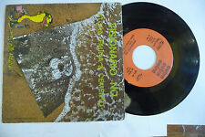 "FLORA FAUNA CEMENTO""VISIONARIO NO-disco 45 giri CETRA 1976""PROG IT"