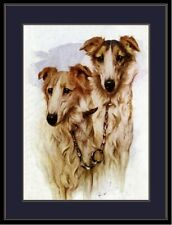 English Print Borzoi Dog Russian Wolfhound Art Picture